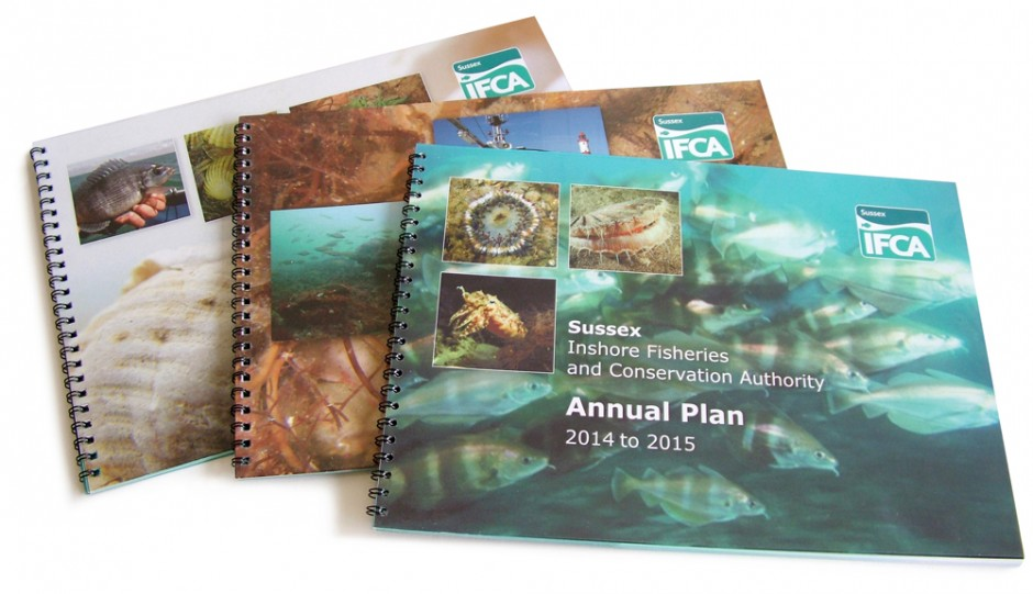 IFCA Annual Plan covers