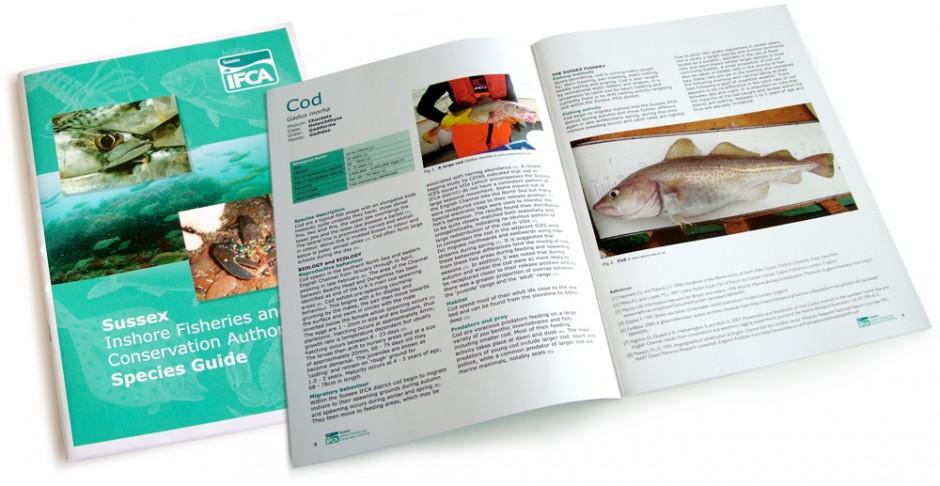 IFCA Species Guide