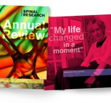 Spinal Research AnnReview-2012 concept