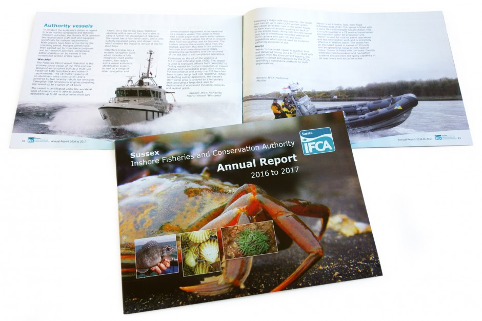 IFCA-Report-2017